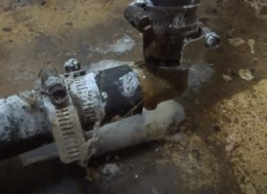 Basement Leak Black Mold Hero Mold Company Chapel Hill NC