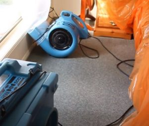 HEPA Vacuum Mold Clean up Hero Mold Company Durham NC