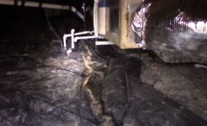Wet Crawl Space Hero Mold Company High Point NC